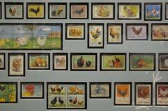 De tentoongestelde voorwerpen van kippenzegels collectibles royalty-vrije stock fotografie