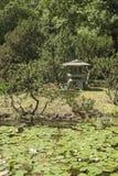 De tentoonstelling & x22; Japanse Garden& x22; in de Belangrijkste Botanische Tuin, Academie van Wetenschappen Stock Foto's