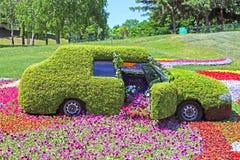 De tentoonstelling van bloemauto's in Spivoche Pool in Kyiv, de Oekraïne stock fotografie