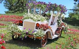 De tentoonstelling van bloemauto's in Spivoche Pool in Kyiv, de Oekraïne stock foto