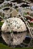 De tentoonstelling van Gent Floralies 2010, van de bloem en van de installatie Royalty-vrije Stock Foto