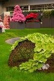 De tentoonstelling van Gent Floralies 2010, van de bloem en van de installatie Royalty-vrije Stock Afbeeldingen