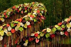 De tentoonstelling van Gent Floralies 2010, van de bloem en van de installatie Stock Fotografie