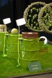 De tentoonstelling van Gent Floralies 2010, van de bloem en van de installatie Royalty-vrije Stock Afbeelding