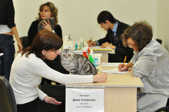 De tentoonstelling van katten Stock Foto's