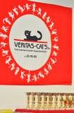 De tentoonstelling van katten Royalty-vrije Stock Foto's