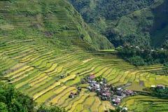 De terrassen van de rijst in Batad Royalty-vrije Stock Foto