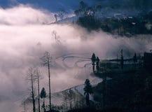 De terrassen van de rijst van yuanyang Stock Foto