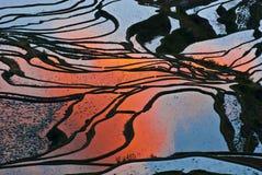 De terrassen van de rijst van yuanyang Royalty-vrije Stock Afbeeldingen