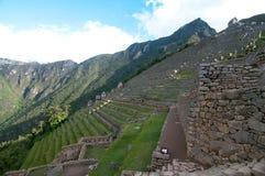 De terrassen van het gras in Machu Picchu Royalty-vrije Stock Foto