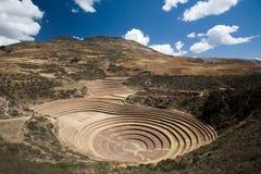 De Terrassen van Inca van Moray stock fotografie