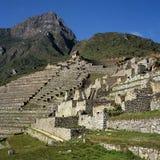 De terrassen van Picchu van Machu Stock Foto