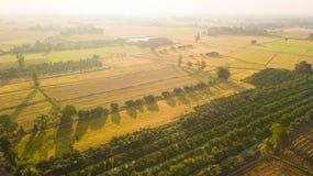 De terugwinning van de gebiedsgrond als voorbereiding op het zaaien of plantin royalty-vrije stock afbeeldingen