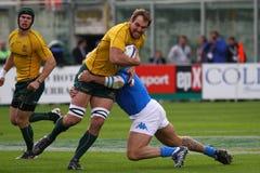 De testgelijke 2010 van het rugby: Italië versus Australië Stock Foto