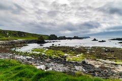 De texturen en het landschap van Noord-Ierland stock foto's