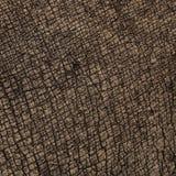 De texturen van de rinoceroshuid Stock Afbeeldingen