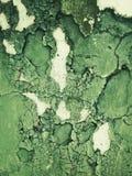 De texturen van Grunge Stock Foto