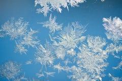 De textuur rozen venster Stock Foto