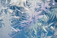 De textuur rozen venster Royalty-vrije Stock Afbeelding