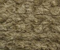 De textuur van bruin bont Stock Afbeelding