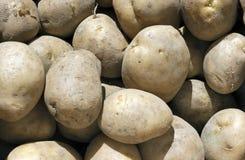 De textuur van de aardappel Royalty-vrije Stock Fotografie