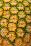 De textuur van de ananas Stock Foto