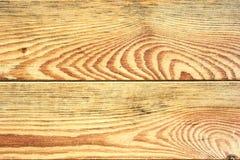 De textuur van de berkboom Stock Afbeeldingen