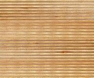 De textuur van de berkehoutsectie Royalty-vrije Stock Foto