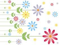 De textuur van de bloem Royalty-vrije Stock Afbeelding