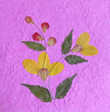 De textuur van de bloem en document Stock Afbeeldingen