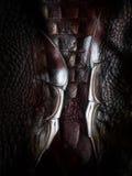 De Textuur van de dinosaurushuid Stock Foto