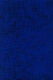 De Textuur van de Huid van Lizzard stock foto's