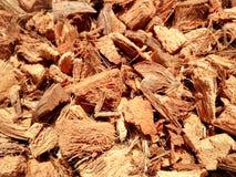 De textuur van de kokosnotenschil Stock Fotografie
