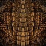 De textuur van de krokodilhuid Stock Afbeeldingen