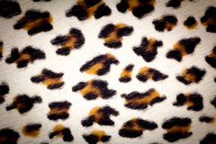 De textuur van de luipaardhuid Stock Afbeelding