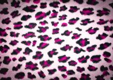 De textuur van de luipaardhuid Stock Afbeeldingen