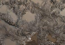 De Textuur van de modder