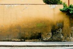 De textuur van de muur Stock Fotografie