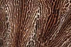 De textuur van de ocelothuid Stock Afbeelding