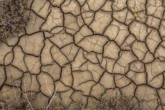 De textuur van de oppervlakte van de aarde die van Dr. is gebarsten Stock Foto's