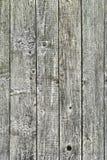 De textuur van de oude houten raad Stock Foto