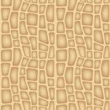 De Textuur van de pinda Stock Foto