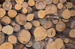 De textuur van de reeks boomboomstammen vormt een ononderbroken muur Stock Foto