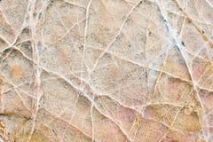 De textuur van de rots voor achtergrondontwerp Stock Foto's