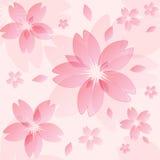 De textuur van de Sakurabloesem royalty-vrije illustratie