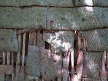 De textuur van de schorsmuur Stock Foto