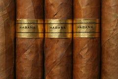 De Textuur van de Sigaren van Havana Royalty-vrije Stock Fotografie
