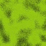 De textuur van de slang Stock Fotografie