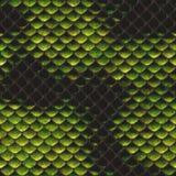 De textuur van de slanghuid Royalty-vrije Stock Afbeeldingen
