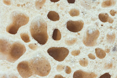 De textuur van de spons Royalty-vrije Stock Fotografie